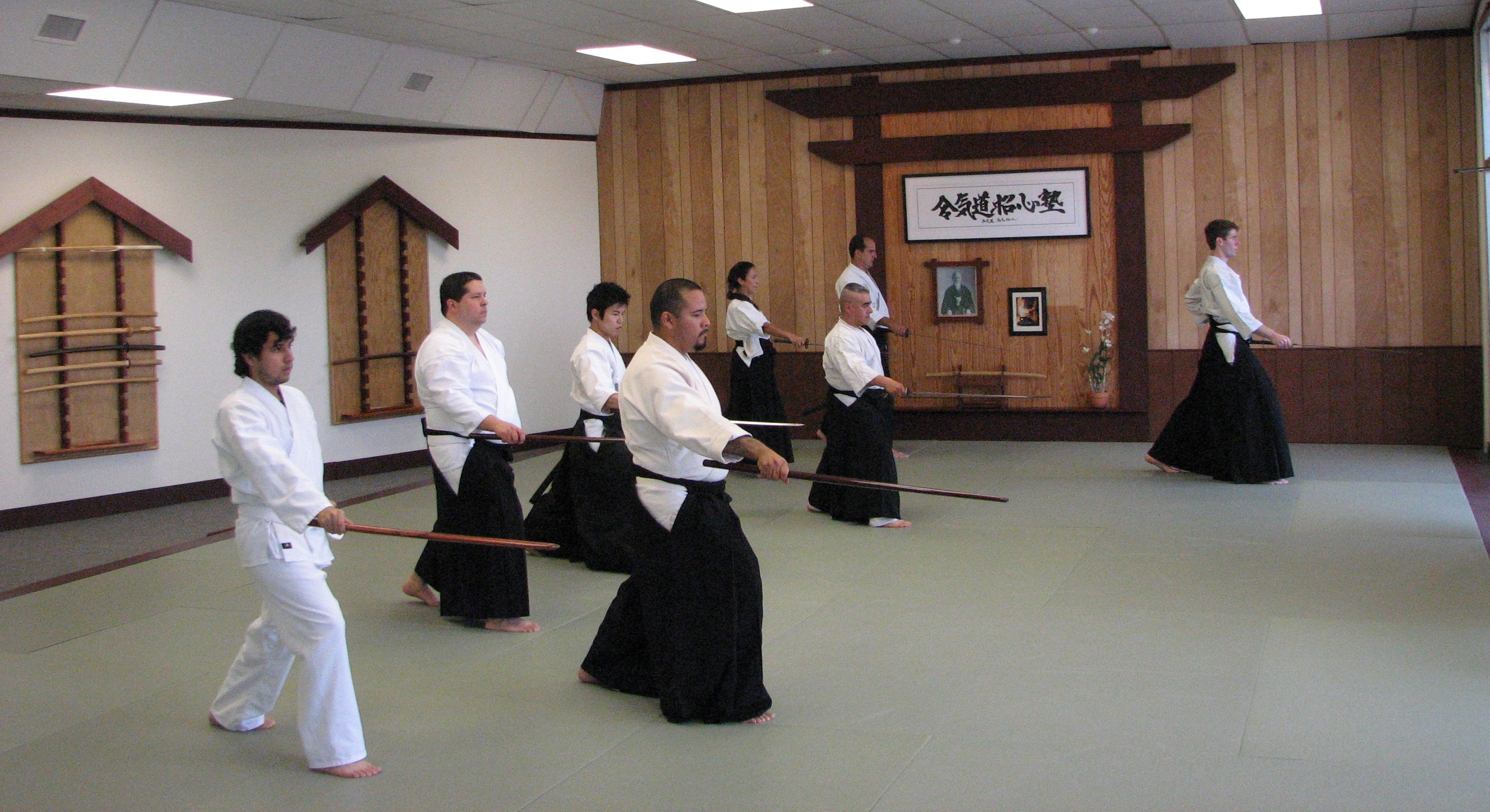 aikido sport Christina kelly is an editor for aikido journal and has practiced aikido for about a year, currently holding the rank of fourth kyu she is a professional writer and editor specializing in video games and.